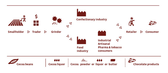 This infographic shows how cocoa gets produced, from smallholder farmers to consumers.
