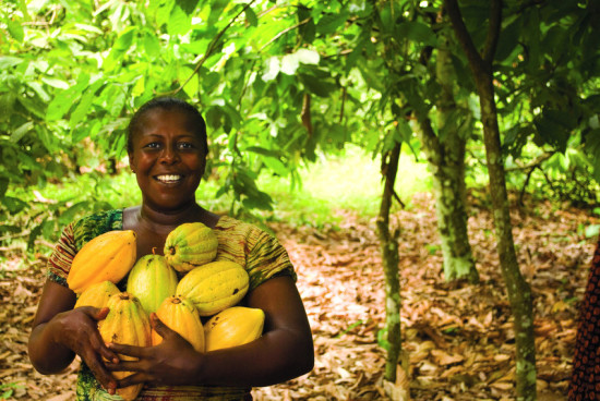 Juliet Brago (pictured above) is 45 years old and has been a cocoa farmer for 14 years. She joined Kuapa KoKoo in 2002 and has a cocoa farm of 10 acres. She is an executive member of her village society of Awaham in the Ashanti region of Ghana. She is also the vice-chairwoman of her society's women's group which trains women for alternative income generation projects that provide families with money after the cocoa season ends.