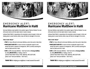 thumbnail of matthew-bulletin-insert
