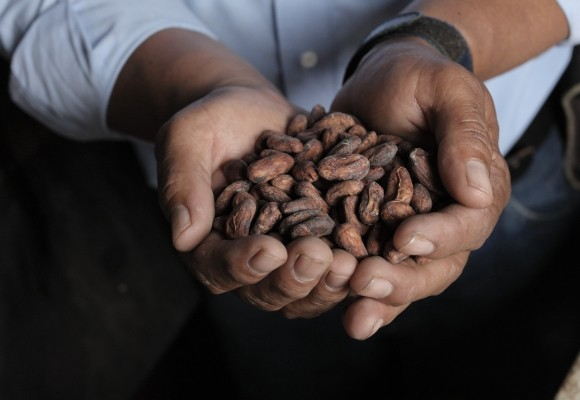 Renowned chocolatier uses cocoa from an LWR partner in Nicaragua. Here's why