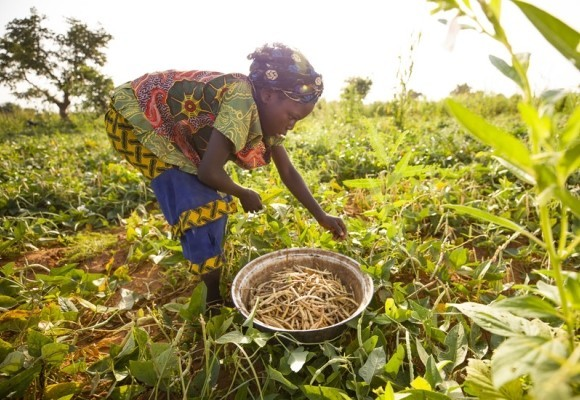 The EU & LWR launch initiative in Niger to increase farmers' resilience to climate change