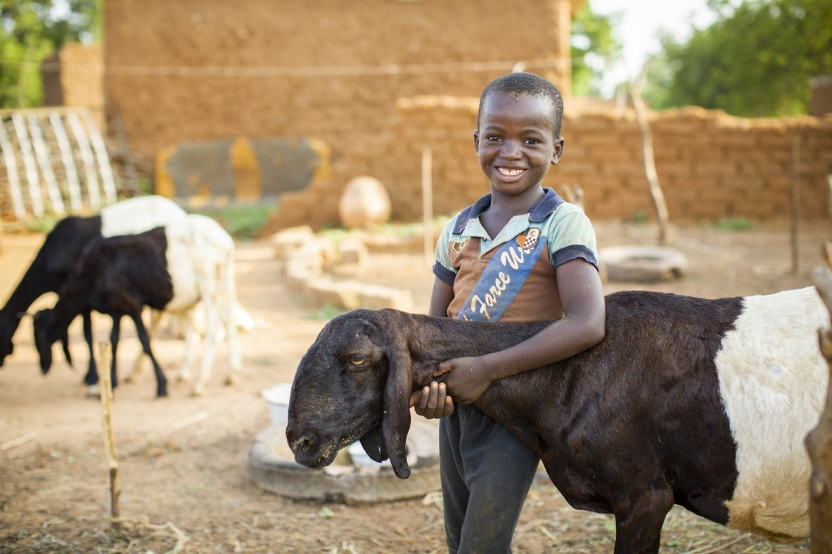 Assouman Ayouba (9) hugs one of his family's sheep that was bred under the 12/12 Alliance's sheep-fattening initiative in Tahoua Region, Niger Alliance 12/12 Project - Niger, West Africa. Photo by Jake Lyell for Lutheran World Relief