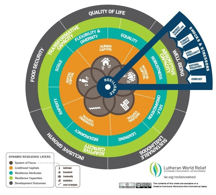 Dynamic Resilience Wheel